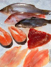 Прикорм из рыбы