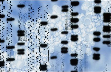 Гены и наследственность