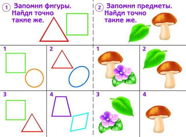 Упражнения для развития зрительной памяти у детей