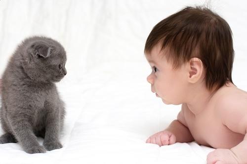 Ребенок сопливит и чихает