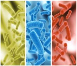 Диагностика дисбактериоза у детей