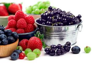 Какие ягоды можно давать ребенку