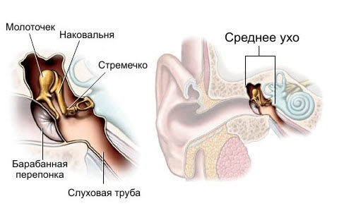 У ребенка воспаление уха