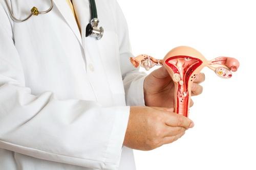 Влагалище после родов: состояние, изменения, восстановление