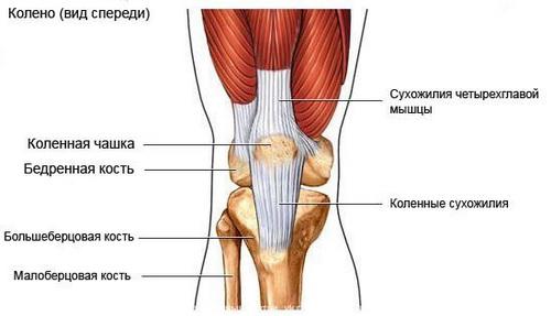 Когда болит колени что нужно делать