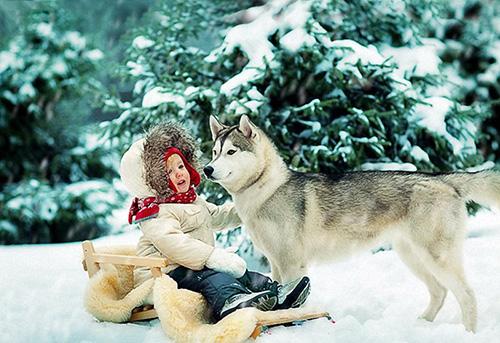 Новый год с ребенком в Карелии