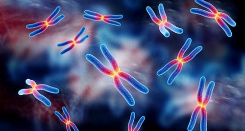 Chromosomal pathology of the fetus: what it is, markers, transcript