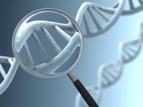 Хромосомные патологии плода: что это такое, маркеры, расшифровка