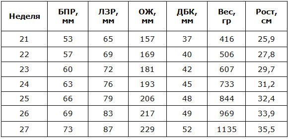 Таблица третьей фетометрии плода