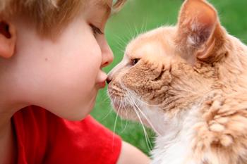 как ребенок может заразиться лишаем